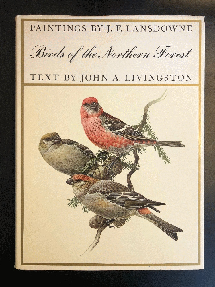 Image for Birds of the Northern Forest